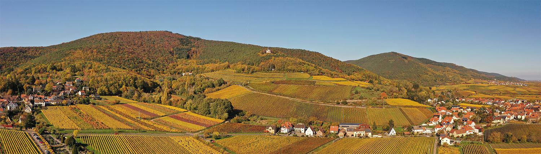 Südliche Weinstraße